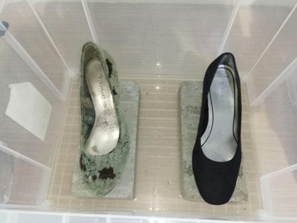 高效鞋材防霉抗菌剂